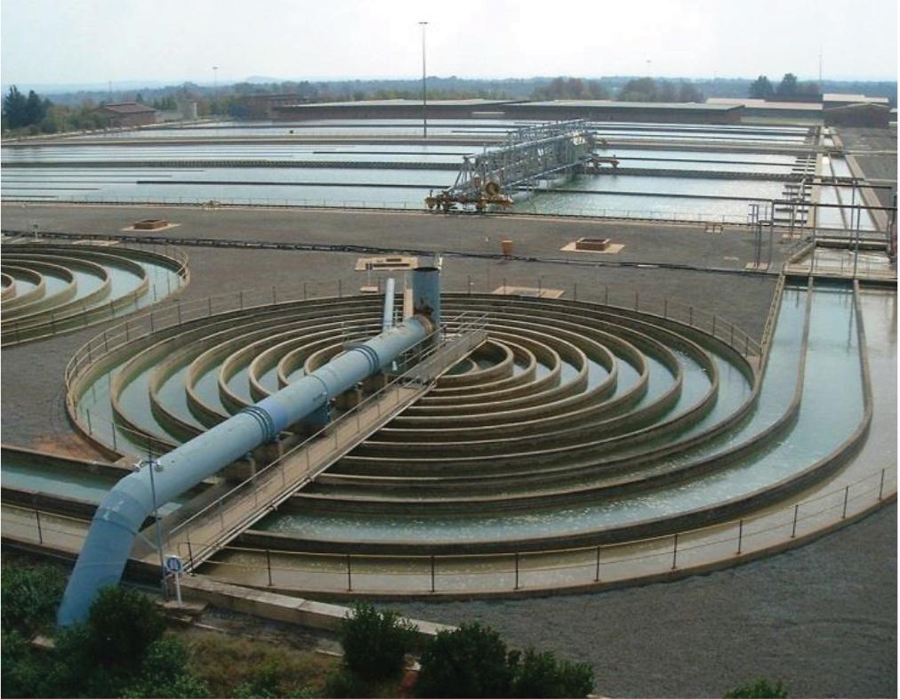Rand Water Vereeniging
