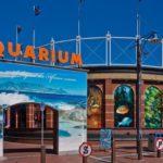 Two Oceans Aquarium Extension