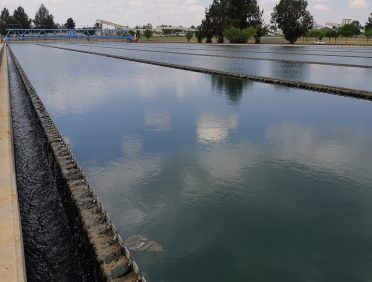 Rand Water Zuikerbosch Water Treatment Plant